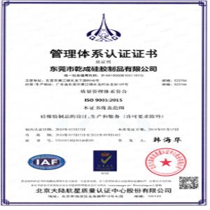 热烈祝贺公司顺利通过ISO9001-2015版国际质量体系认证!!!